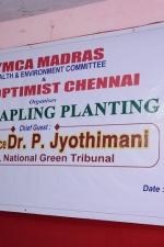 ymca-tree-planting-stills-001